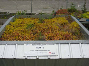 Green Roof Research - Quad-Lock REM-10 with green roof layer