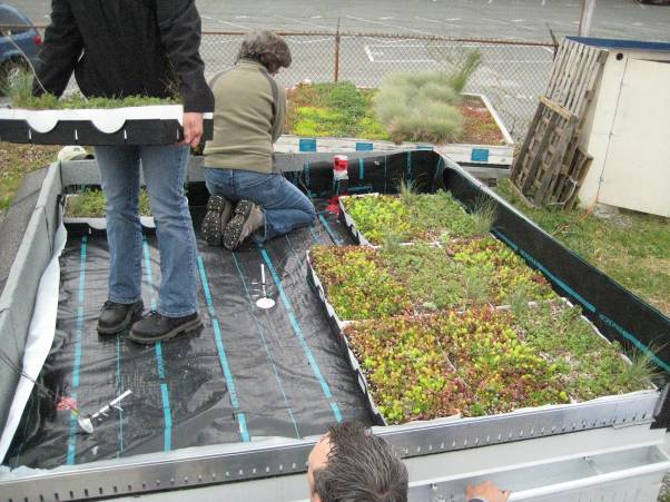 Green Roofs With Insulated Concrete Forms Thermal