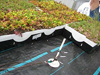 Green Roof Research - ICF Structure Greening 3