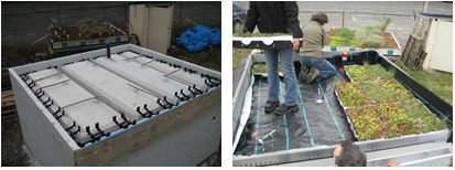 Icf vs wood net zero energy home green roof study for Icf concrete roof